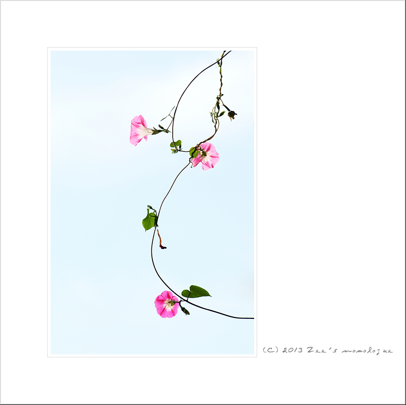 work-DSCF3492-r.jpg